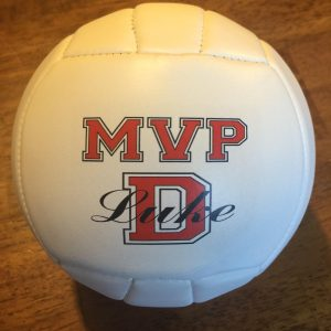 Custom Made Personalized Mini Volleyballs